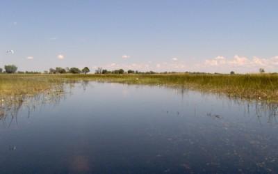 Botswana – Desember 2006