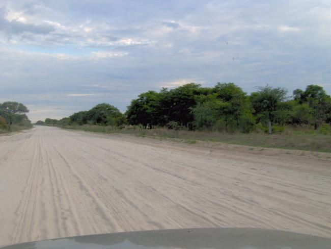 Maun Moremi road