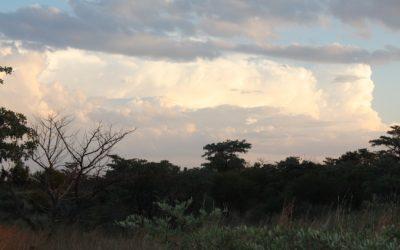 Kyleu Bushcamp
