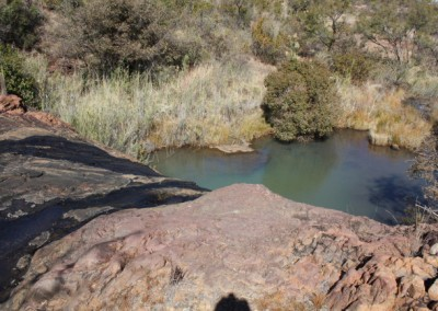 Pool in mountain stream 1